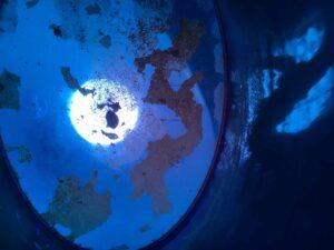 Bild: waste-art koenigsblau, ein Abfallbild von Georg Marbet